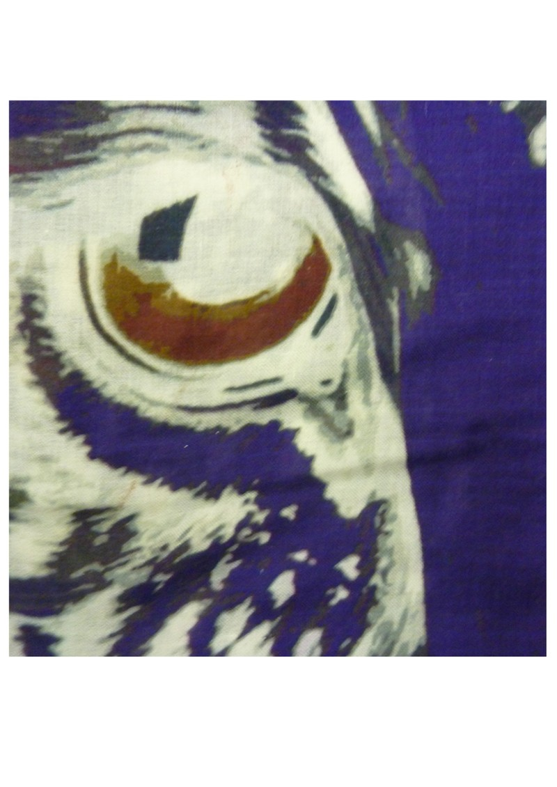 Lily and Lionel Eye of the Tiger Silk Scarf - Purple main image